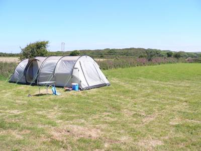Grass Camping Pitch – Tent