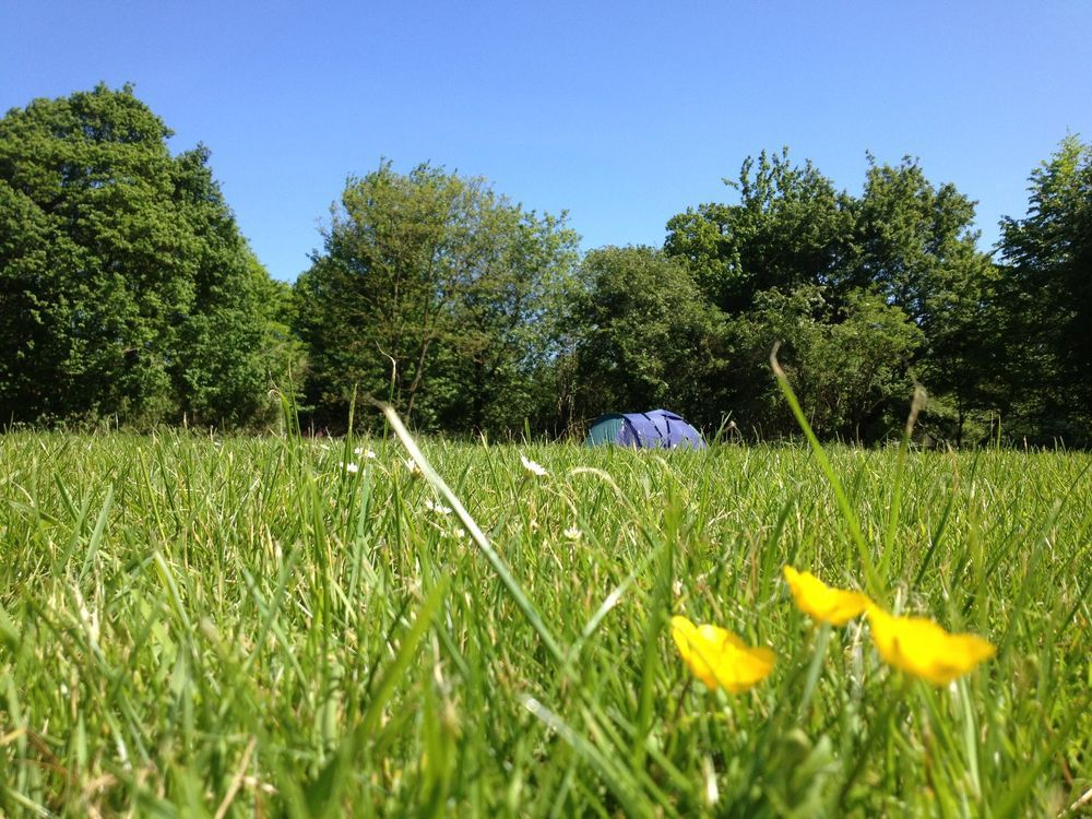 Campsites in East Anglia