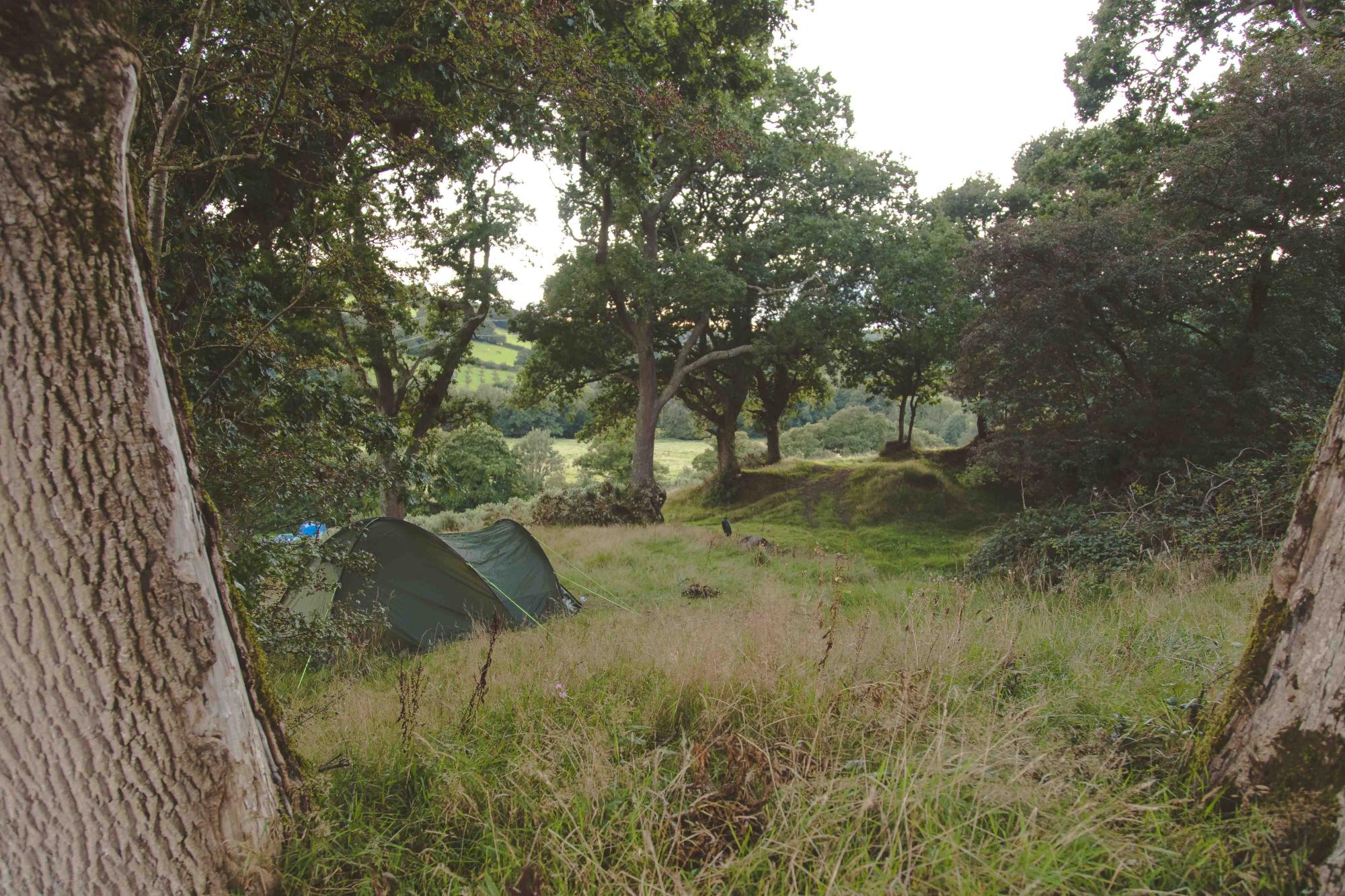 Campsites in South West England – I Love This Campsite