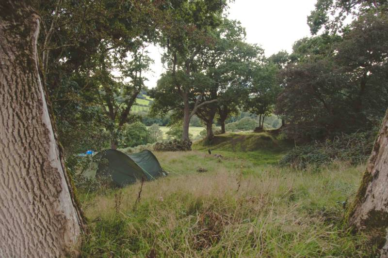 Bush Farm Campsite offers wild-ish camping in south Cornwall.