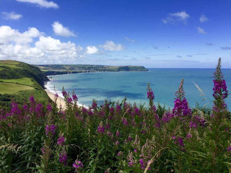 Hotels, Cottages, B&Bs & Glamping in Ceredigion