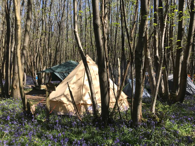Badgells Wood Camping Badgell's Wood, Whitehorse Road, Meopham, Kent DA13 0UF