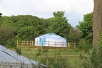Dog Friendly Yurt