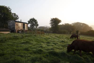 Glamping in Somerset – The best glampsites in Somerset – Cool Camping