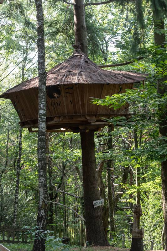 """Hibou"" Owl Tree House"