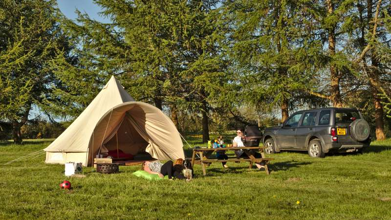 Woodcock Furnished Bell Tent