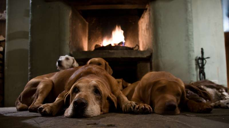 The Best Country Pubs with Fireplaces UK