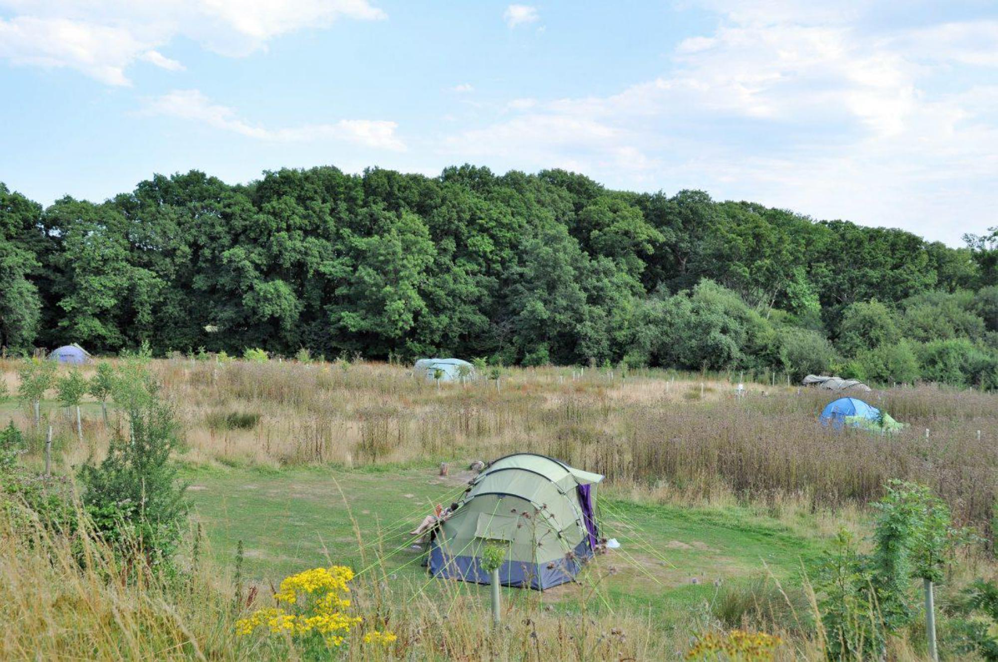 The Secret Campsite, Sussex