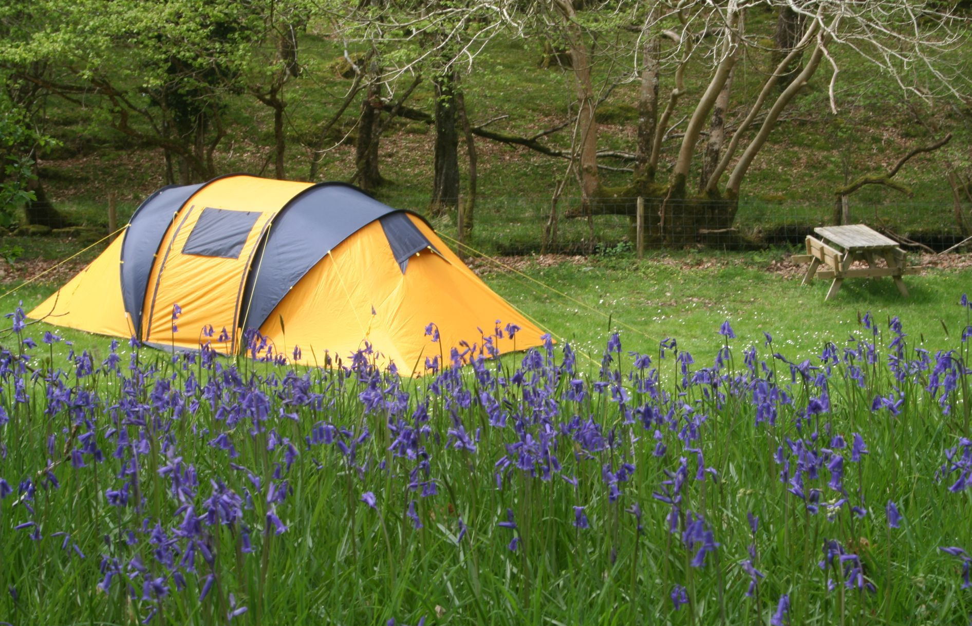 Campsites in Wales – The Best Camping Locations in Wales