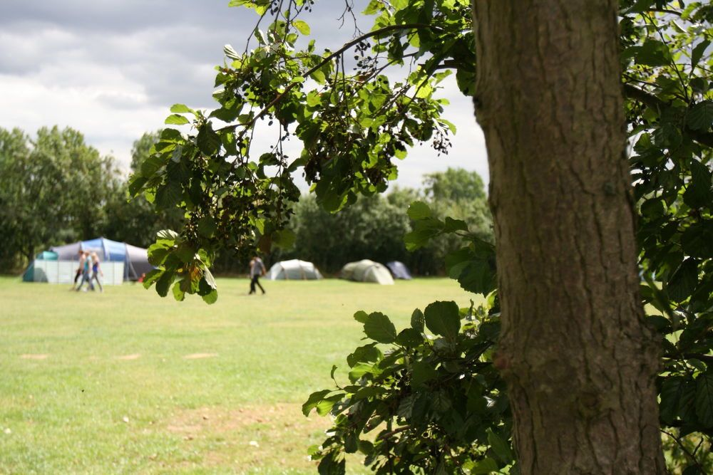 Campsites near London