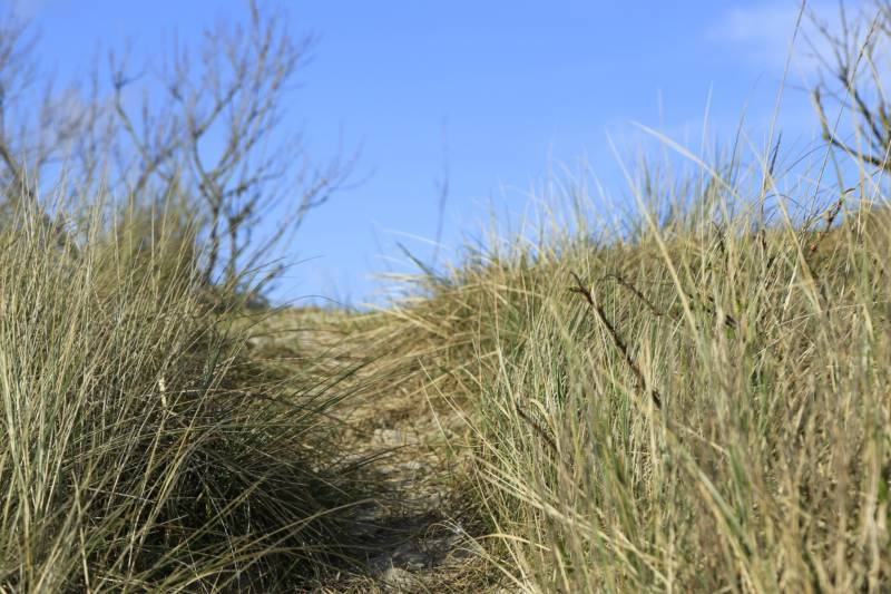 Mablethorpe Camping   Campsites in Mablethorpe, Lincolnshire