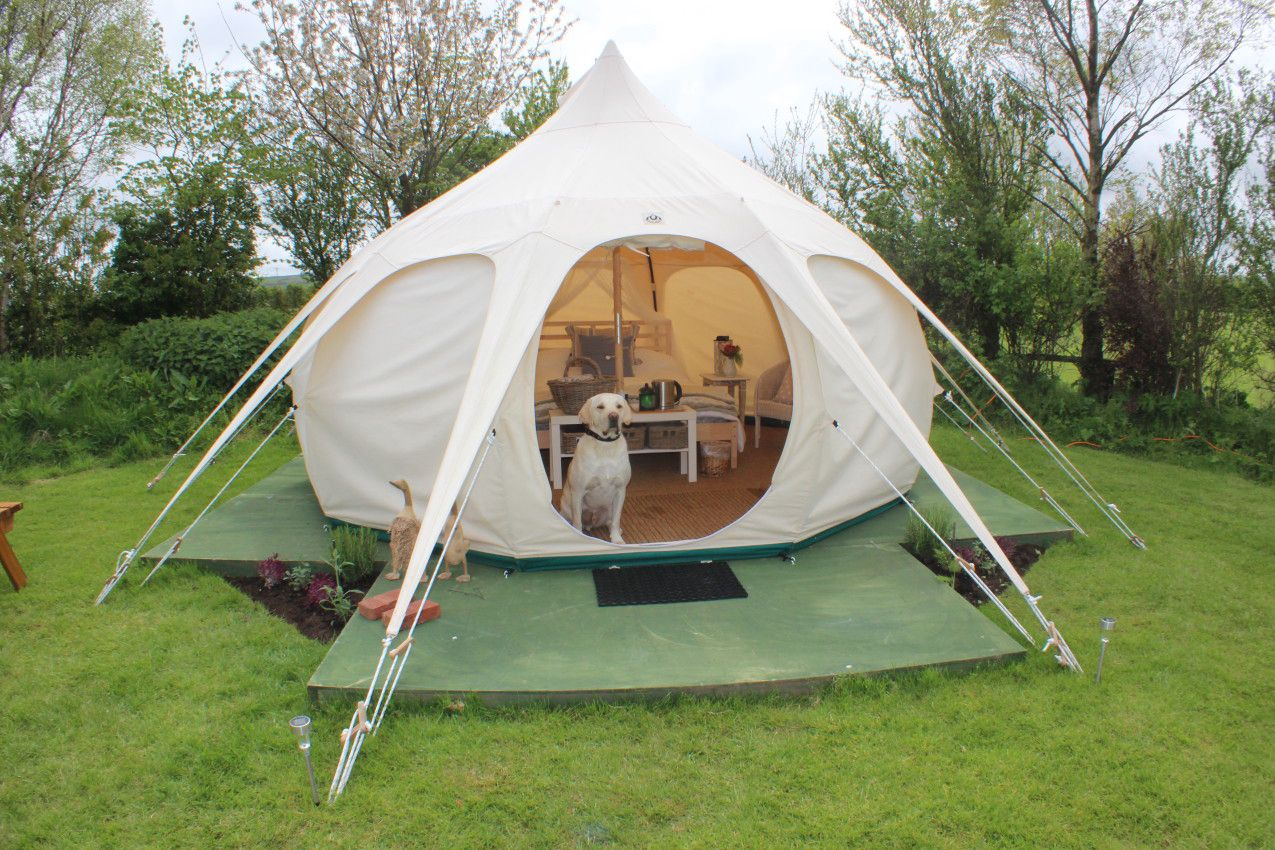 Small Bell Tent At Serenity Camping Cool Camping