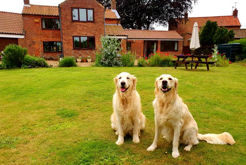 Pack Holidays Near The Lodge, Honing Road, Dilham, NR28 9PN