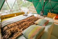 Ash – Stylish eco-friendly geo-domes with gorgeous Welsh woodland views