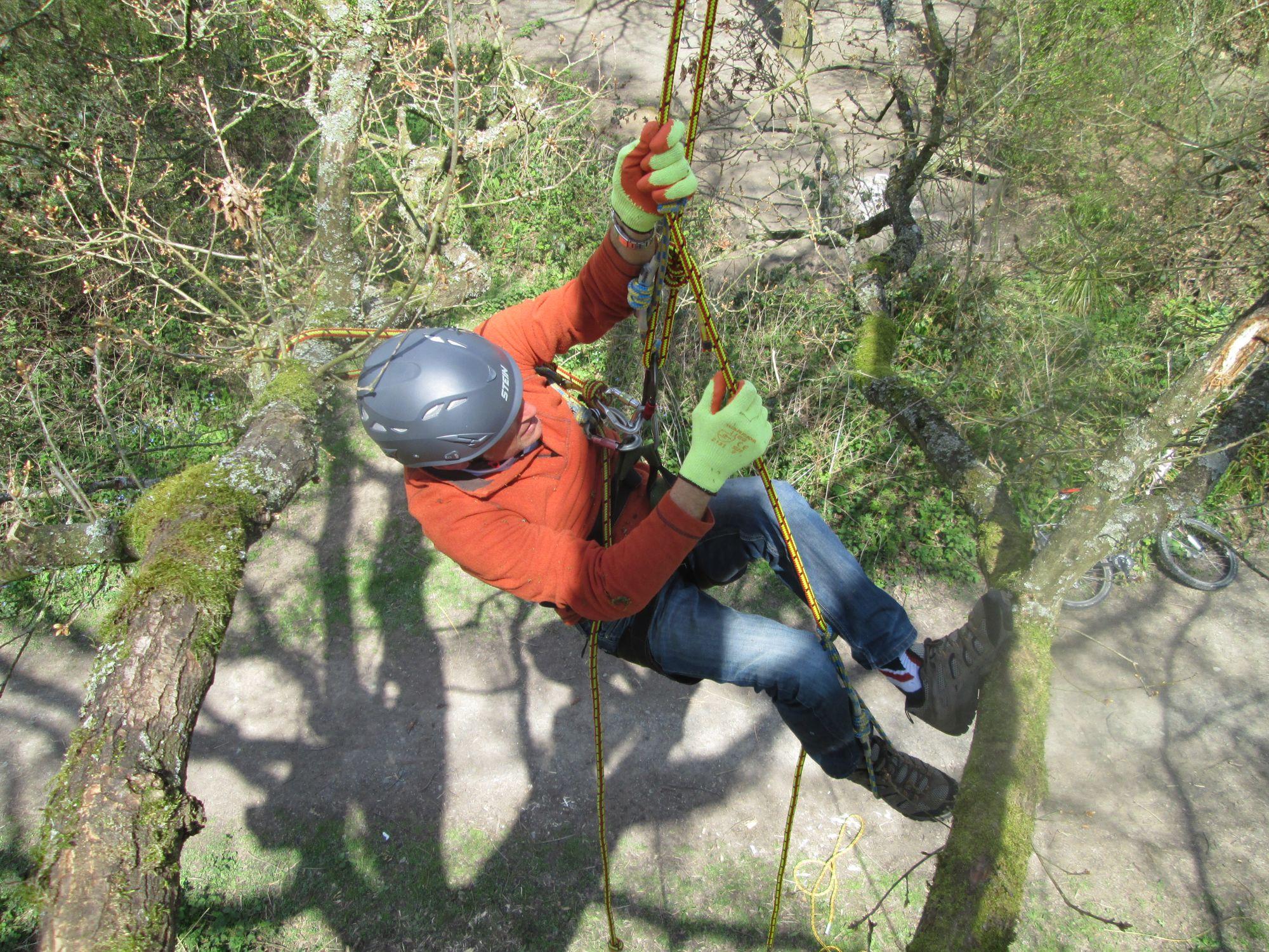 Climbing Wild