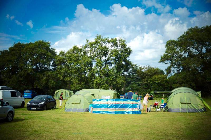Family tents dot Chapelfield Camping in the New Forest, with plenty of space at each pitch.