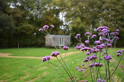 Jordans Estate Glamping Jordans Glamping, Shrubbery Farmhouse, Ilminster, Somerset TA19 9LA
