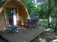 Cosy pods that offers hassle-free glamping in the most serene of surroundings