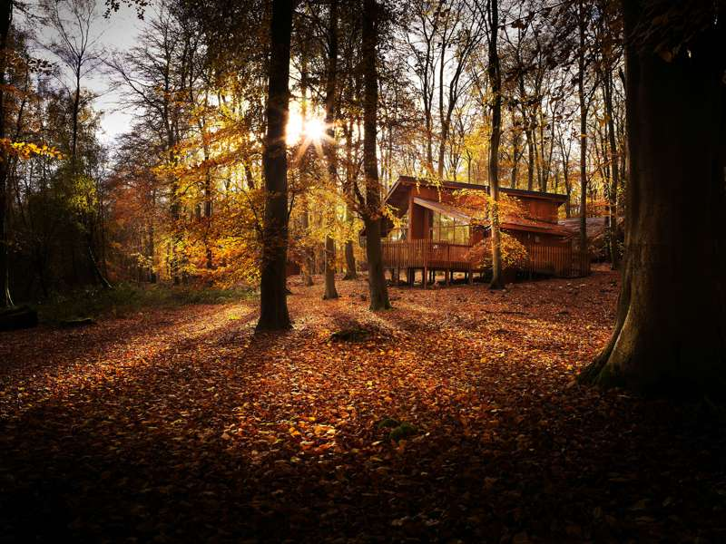 Forest Holidays Blackwood Forest Larkwhistle Farm Road  Micheldever  Winchester  Hampshire  SO21 3BG