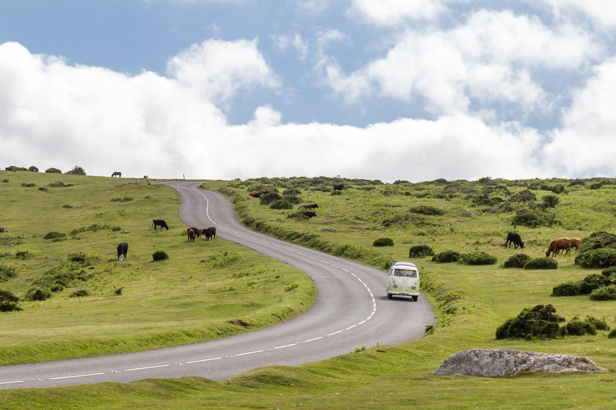 Campervan Hire in the New Forest | Campervan Rental Companies