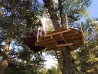 Pendola Tree Tent with terrace