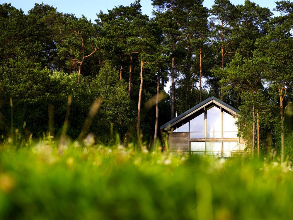 Sizzling Summer Offers at Forest Holidays
