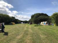 Extra large tent pitch