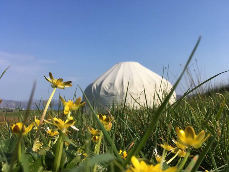 Ballymastocker yurt (ADULT ONLY)