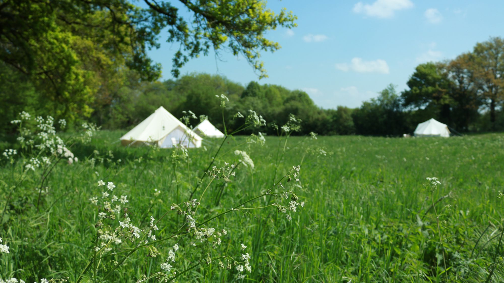 Glamping in Creuse holidays at Glampingly