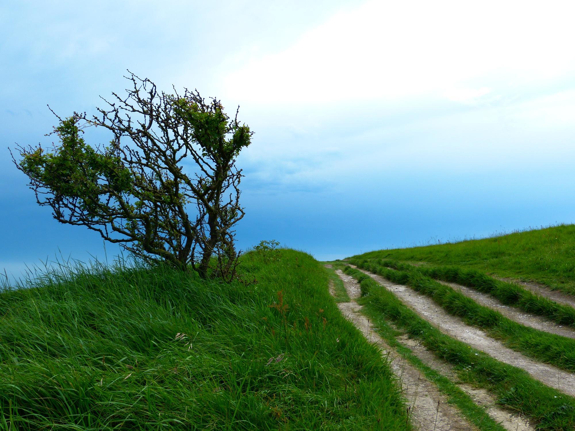 Folkestone Camping – Best Campsites in Folkestone, Kent