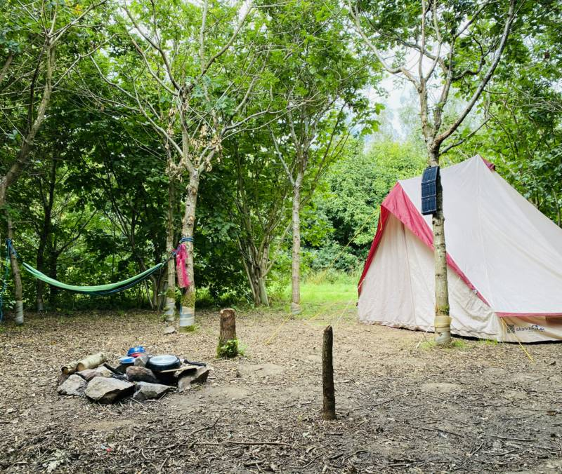 Woodland camping with a campfire area at each pitch and space to sling a hammock.