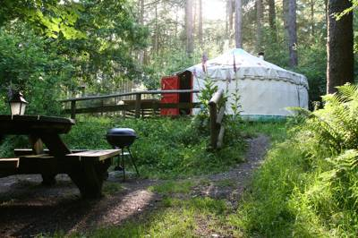 Make like an inner anglo hunter in this forest. Sit around the central woodburner-as long as you chop your wood first!