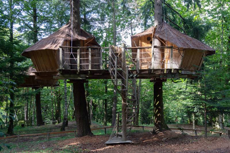 """Castor"" Beaver Family Tree House"