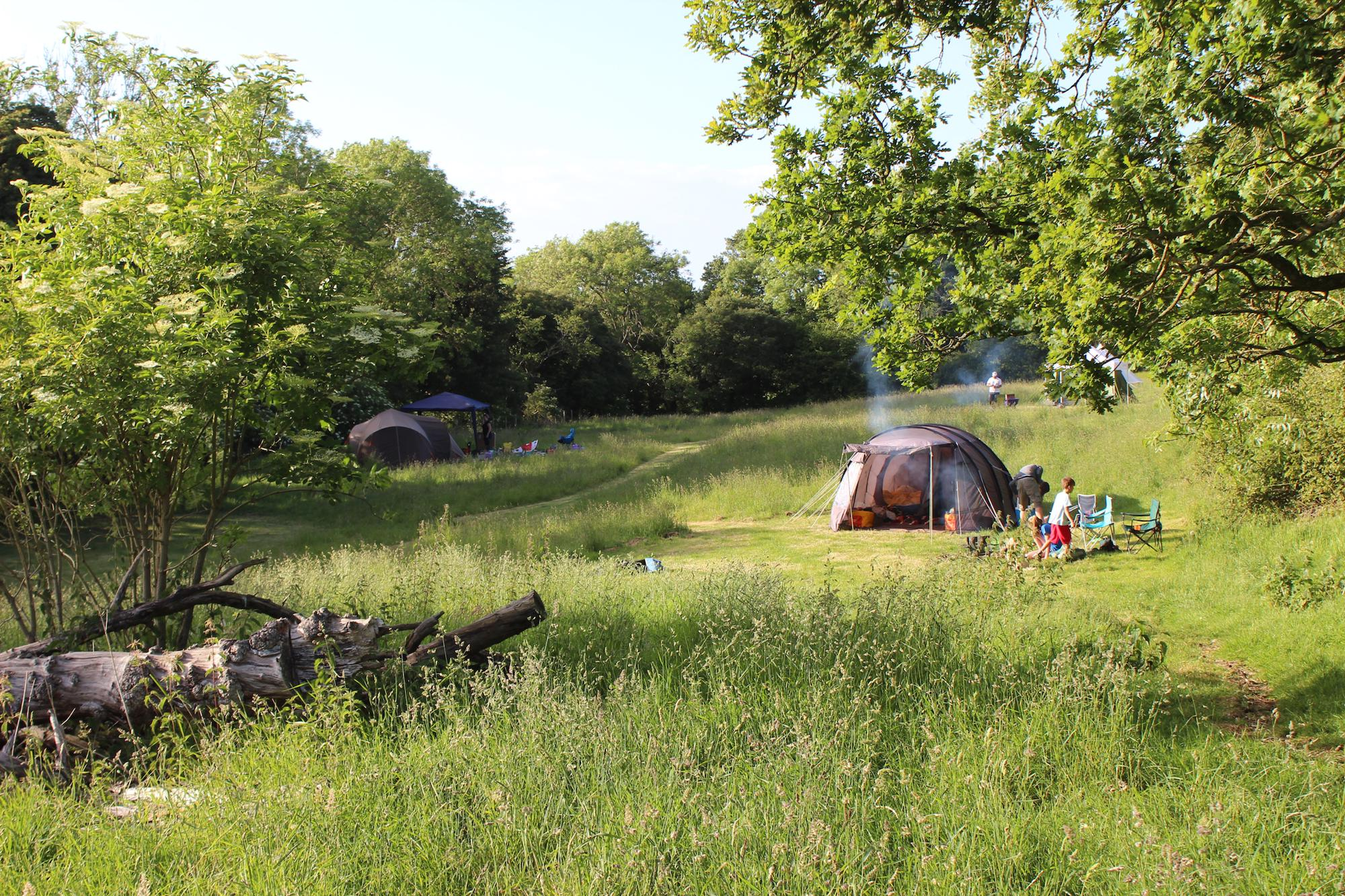 Campsites in Ashford holidays at Cool Camping