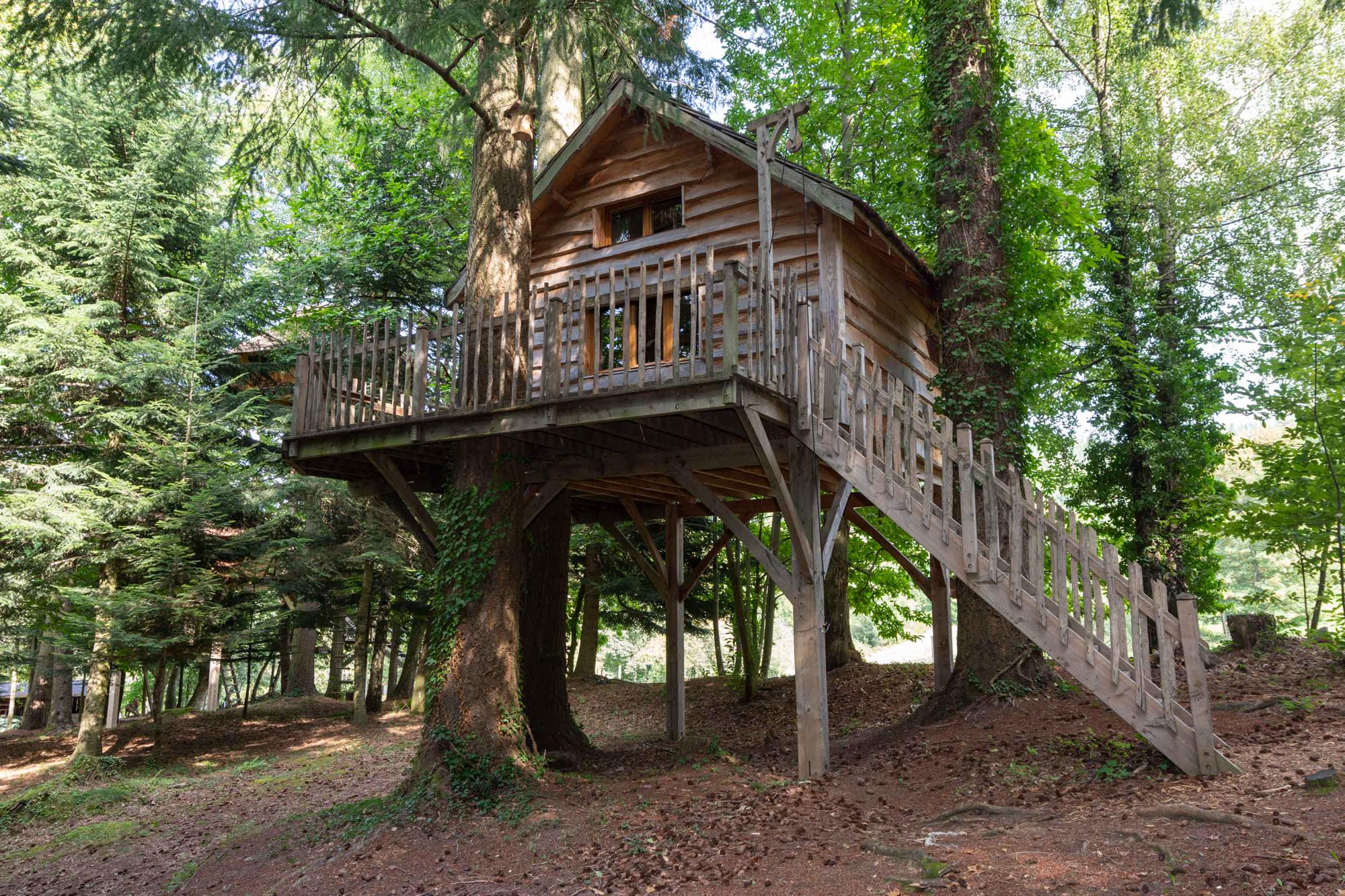 ours bear family tree house at les cabanes de labrousse cool camping