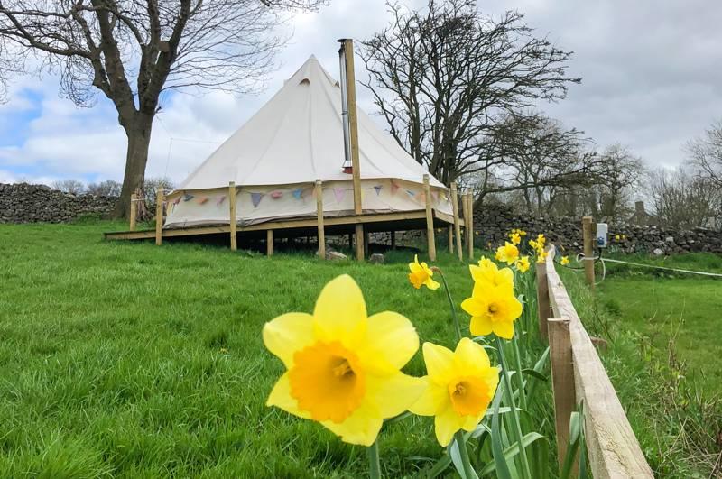 Bell tent (Comfort)