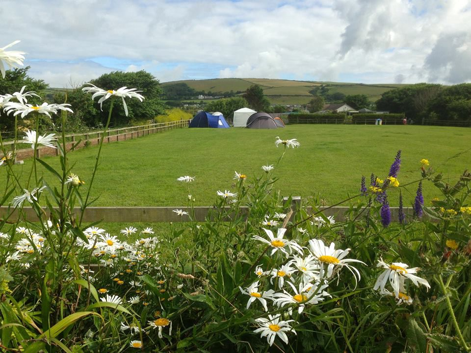 Campsites in Braunton holidays at Cool Camping