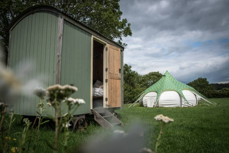 The shepherd's hut and a Lotus Belle tent at Cotswold Meadow Camping.
