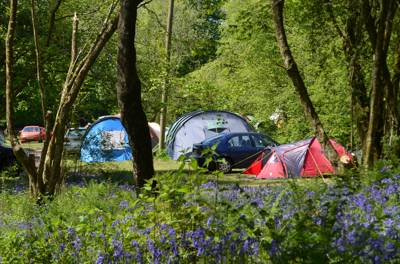Campsites in the Blackdown Hills Area of Outstanding Natural Beauty