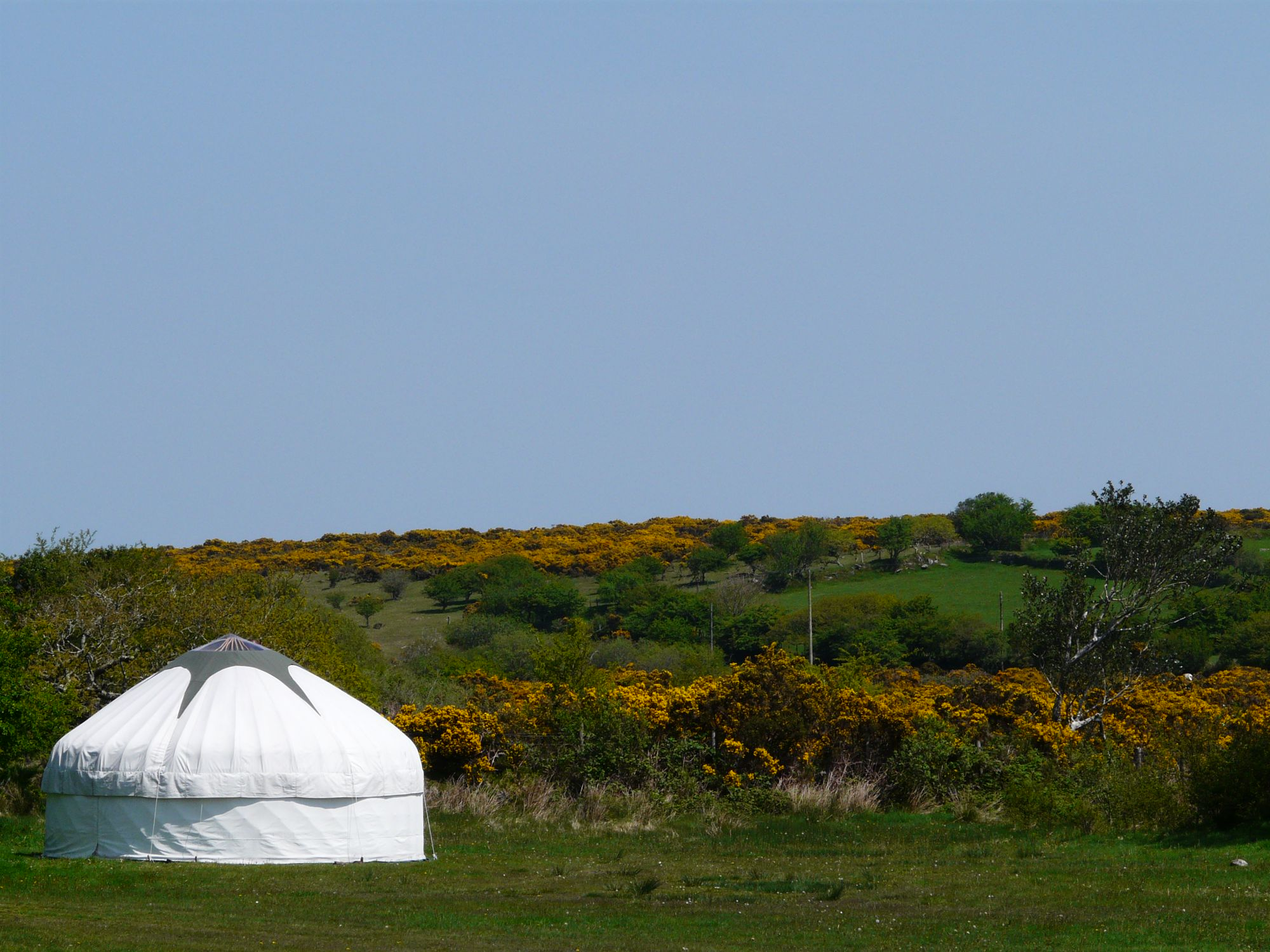 Glamping in Dartmoor – The best glampsites in the national park