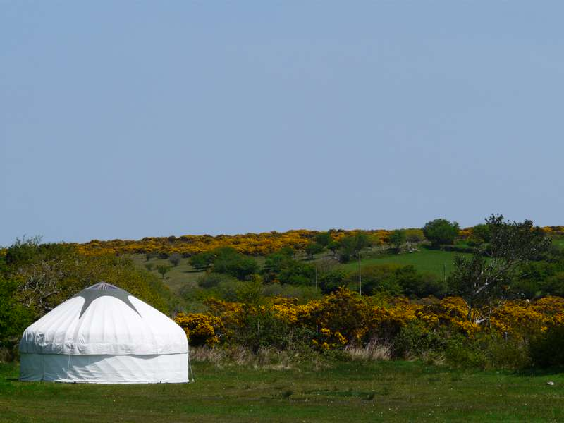 South Penquite Farm Glamping Blisland, Bodmin, Cornwall PL30 4LH
