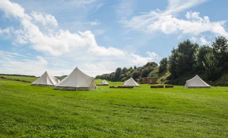 Dorset Farm Camping at Dewflock Farm