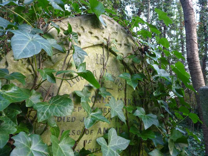 Highgate Cemetery West