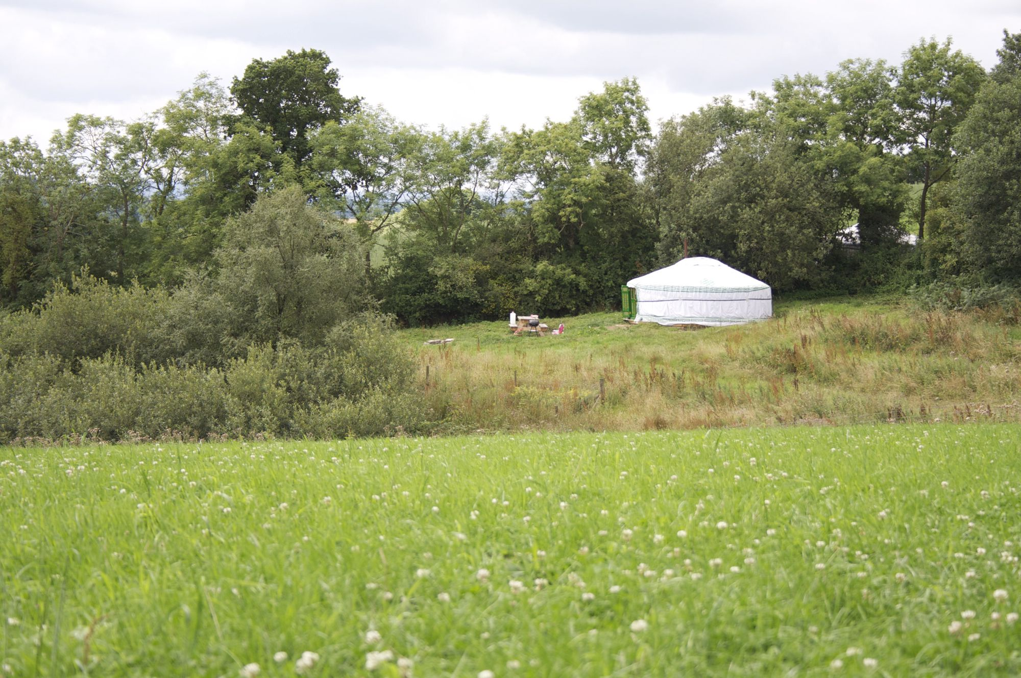 Glamping in Devon: Luxury camping and glamping on an organic Devonshire farm just north of Dartmoor with wonderful views.