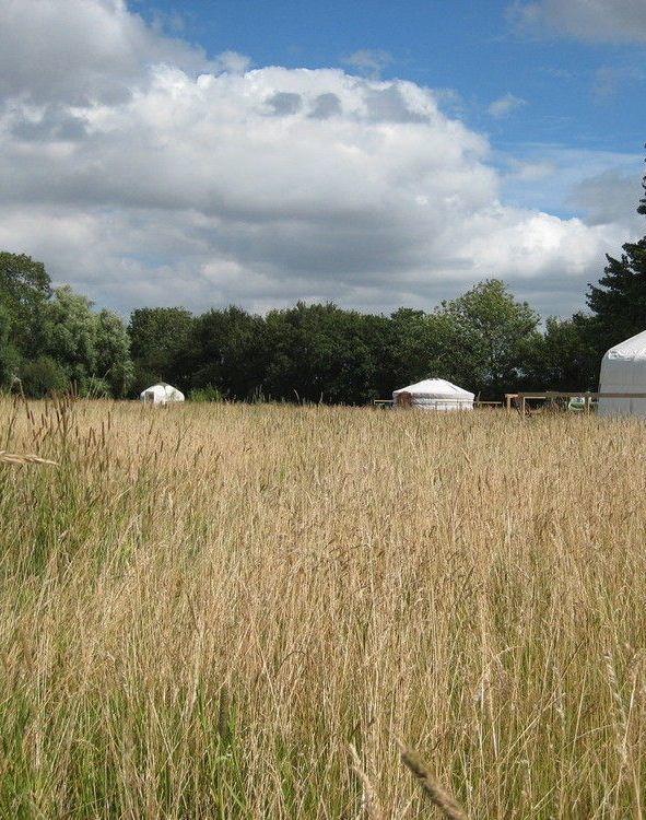 Glamping sites in Norfolk