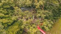 Templar Treehouse