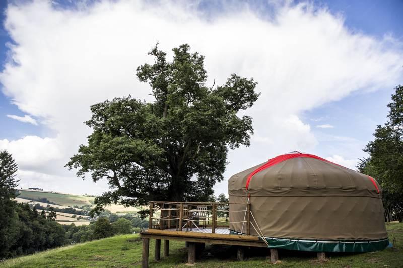 Buffalo Springfield - Yurt