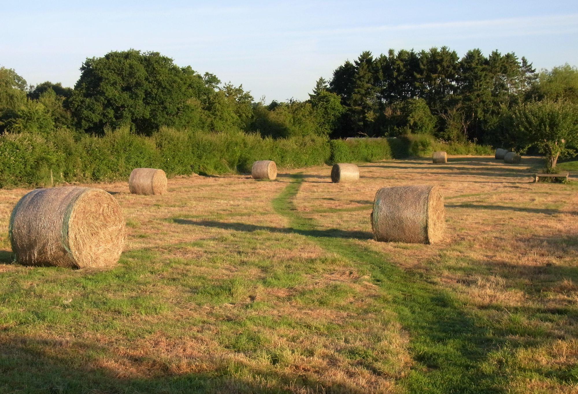 Leominster Camping | Campsites in Leominster, Herefordshire