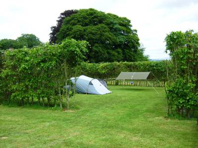 As all Cool Campers know, Devon has no shortage of bucolic boltholes worthy of a pitch up.