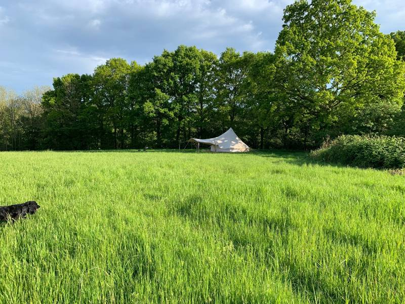 Star Field Glamping & Camping Charity Farm, Swattenden Lane, Cranbrook, Kent TN17 3PS